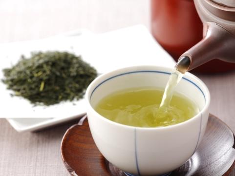 福岡「原口園」星野新茶