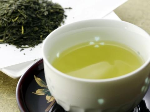 福岡「原口園」八女新茶
