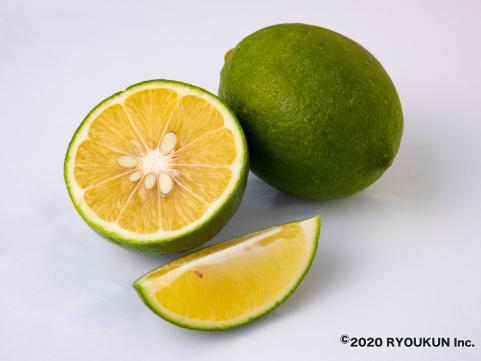 宮崎・日南「緑の里りょうくん」にちなんレモン 3kg