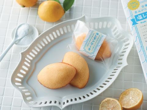 【 九旬直送便 】<br>福岡「オルトアンドカンパニー」宗像の自然の恵みがたっぷり詰まった 塩レモンケーキ
